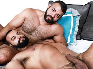 gay bear, gay, gay fat male, gay hunk, gay latin, gay sex