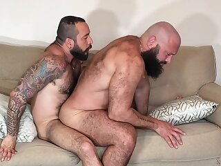 bears, raw, hd, , ,
